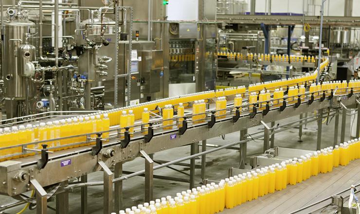 career in food-processing-