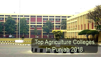 colleges of agriculture