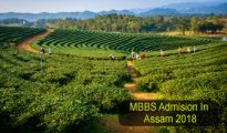 mbbs admission in assam