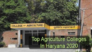 How many agriculture university in haryana